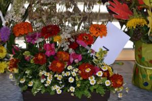 BPMiG w Radkowie Festiwal Kwiatow2019102