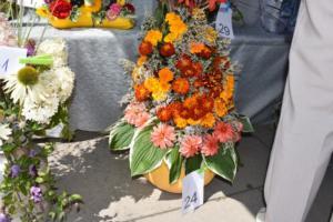 BPMiG w Radkowie Festiwal Kwiatow2019121