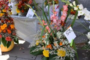 BPMiG w Radkowie Festiwal Kwiatow2019128