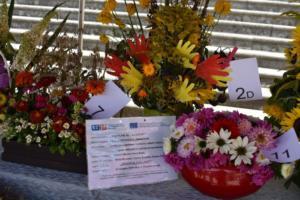 BPMiG w Radkowie Festiwal Kwiatow2019151