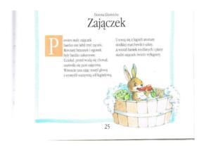 BPMiG Radkowie minipegazik Zajaczek