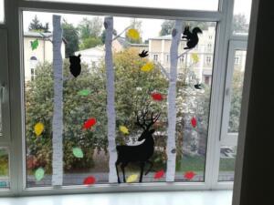 BPMiG w Radkowie jeienne okna12