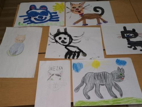 BPMiG Radkow portret kota rozstrzygniecie2