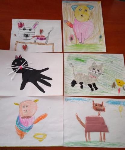 BPMiG Radkow portret kota rozstrzygniecie4