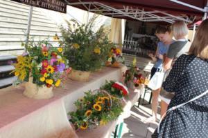 BPMiG Radkow 5 festiwal kwiatow przyjmowanie i ekspozycja kompozycji 12
