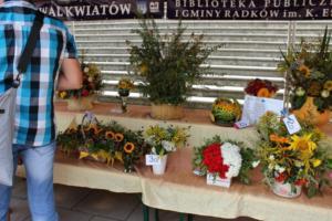 BPMiG Radkow 5 festiwal kwiatow przyjmowanie i ekspozycja kompozycji 33