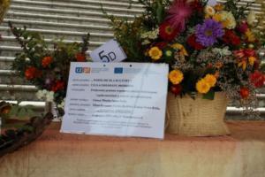 BPMiG Radkow 5 festiwal kwiatow przyjmowanie i ekspozycja kompozycji 36