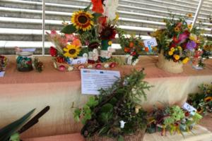 BPMiG Radkow 5 festiwal kwiatow przyjmowanie i ekspozycja kompozycji 38
