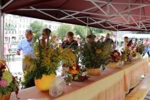 BPMiG Radkow 5 festiwal kwiatow przyjmowanie i ekspozycja kompozycji 41