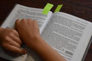 BPMiGRadkow Gminny Konkurs Pieknego Czytania Scinawka Dolna projekt00014