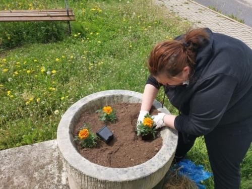 BPMiG Radkow pomnik Dolna kwiaty7
