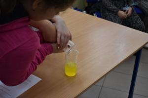 BPMiGRadkow Eksperymenty Scinawka Srednia klasa5b00027