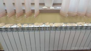 BPMiG w Radkowie masa solna Srednia styczen8
